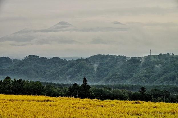 写真: 霞む八ヶ岳