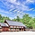 写真: 身曾岐神社(ドラマ風レタッチ)