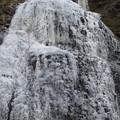 写真: 氷結する滝