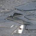 下を見ると 氷のアート