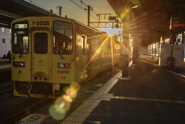写真: 再見艷陽天