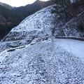 写真: 友内山登山口付近