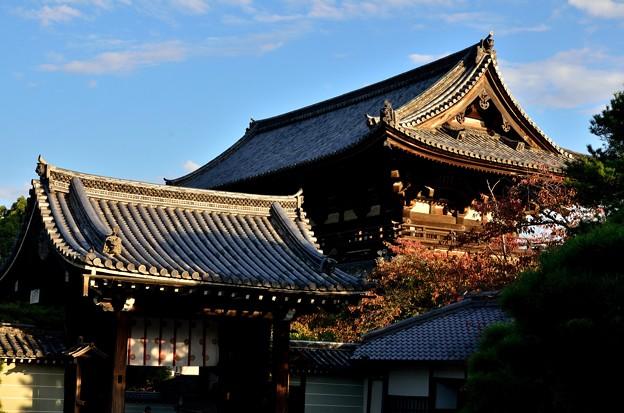 2014_1025_160652_仁和寺