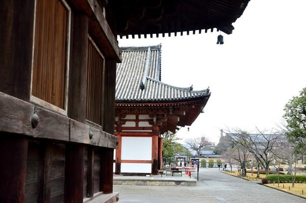 2015_0222_120925_世界遺産 東寺