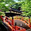 Photos: 2017_0528_153840 輪橋