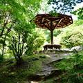 写真: 2017_0924_130148 亀山公園