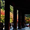 写真: 2017_1105_150505 山門から天授庵
