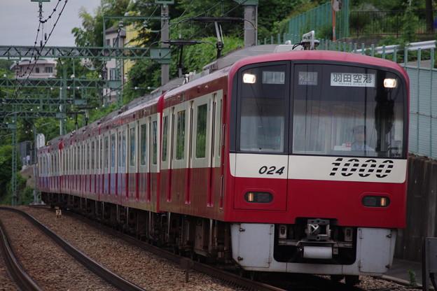 IMGP6435