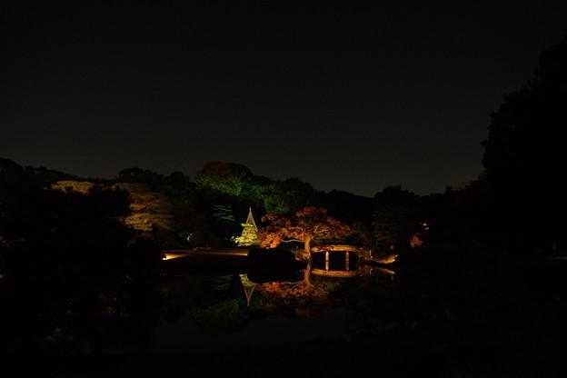 【2014秋のコンクール】闇の中の彩り