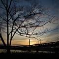 写真: 河川敷
