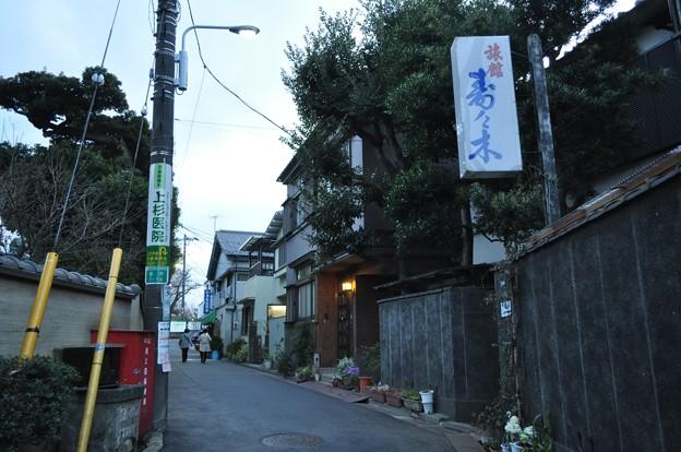 DSC_5121 (私的街角激写団@台東区谷中)