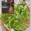 Photos: 七草粥