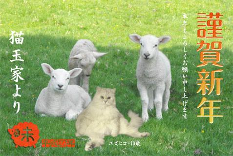 ユズ年賀-楽天