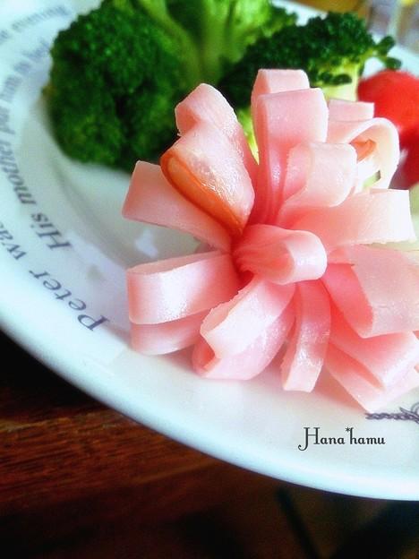 Photos: 花ハム