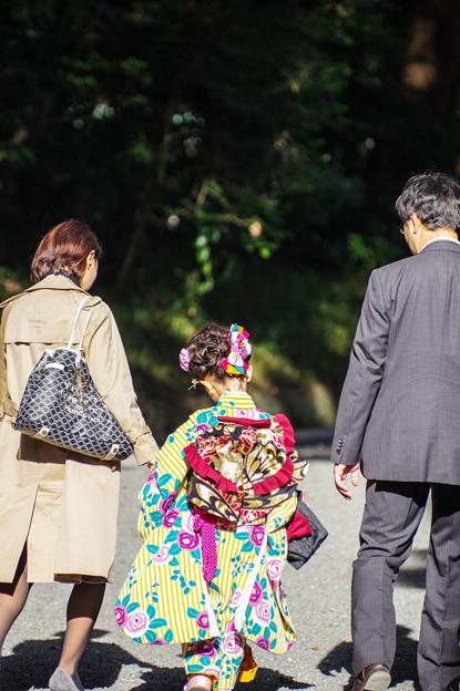 写真: 七五三詣 in 明治神宮