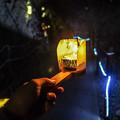 写真: 江の島岩屋
