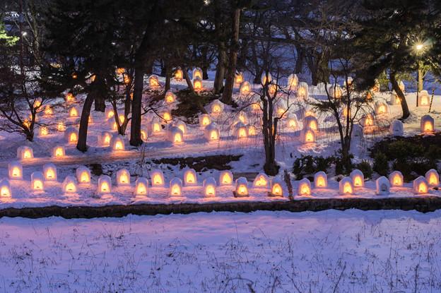 弘前城雪燈籠祭