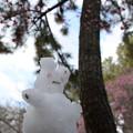 Photos: 小雪だるま