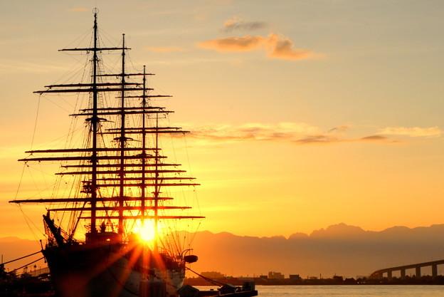 海王丸に差し込む朝陽 IMG_6682
