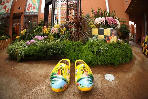 オランダ靴 IMG_0318