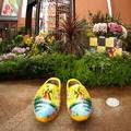 写真: オランダ靴 IMG_0318