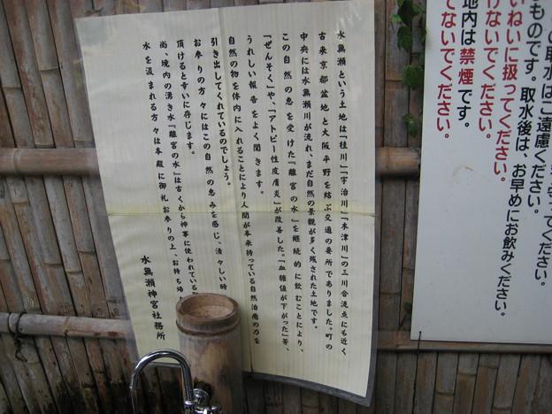 水無瀬神宮 離宮の水 掲示