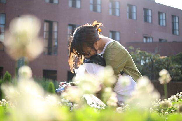 花畑と写真と