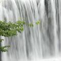 写真: 原尻の滝 流れ落ちる水