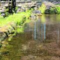 泉水湧水3