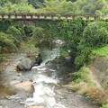写真: 大野川に架かる住吉橋