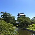 Photos: 松前城と池