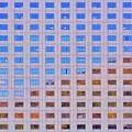 写真: 窓は大きなキャンバス