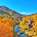 写真: 定山渓の秋