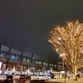 写真: 帯広駅前のイルミネーション