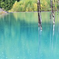 Photos: 秋の青い池
