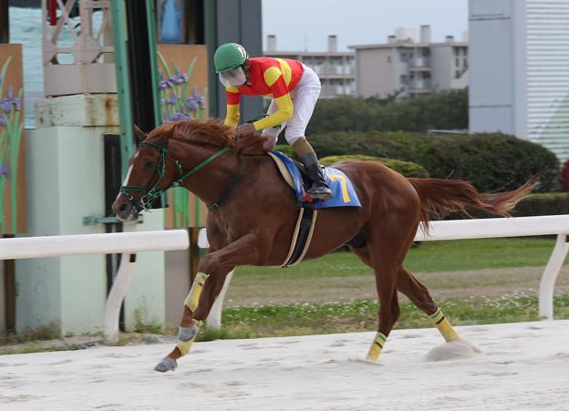 ドリームズライン レース_1(17/05/04・中日スポーツ杯 第56回 駿蹄賞)