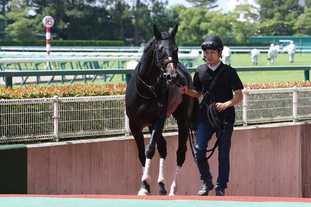 ゼンノトライブ_1(17/07/15・1R)