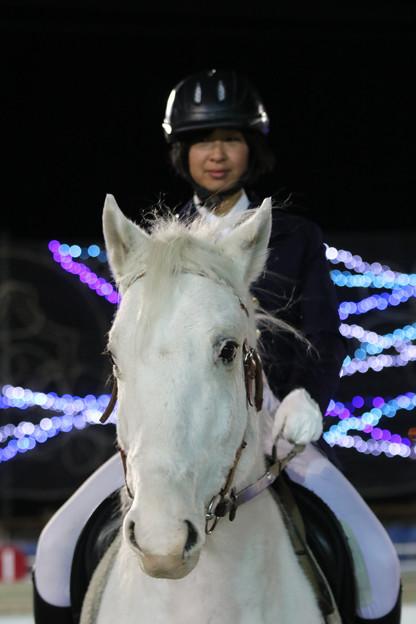誘導馬 プリンス_2(18/01/21・第28回 ヒロインズカップ)