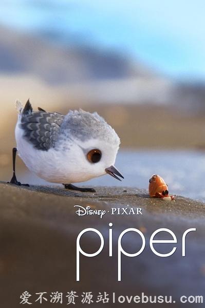 鹬.Piper.2016.HD1080P
