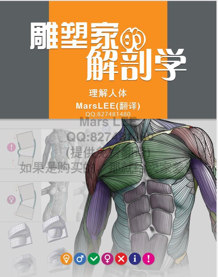 雕塑家的解剖学