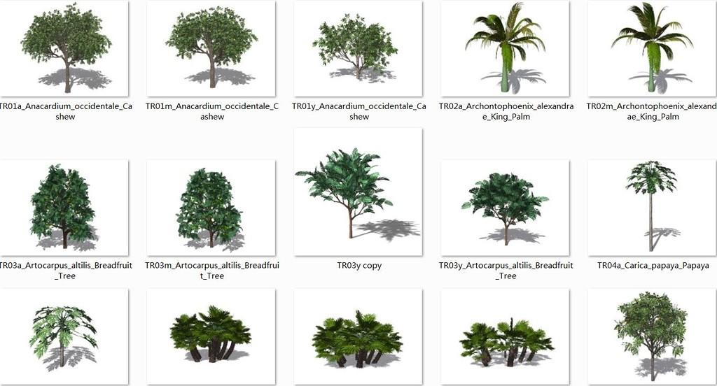 植物模型合集