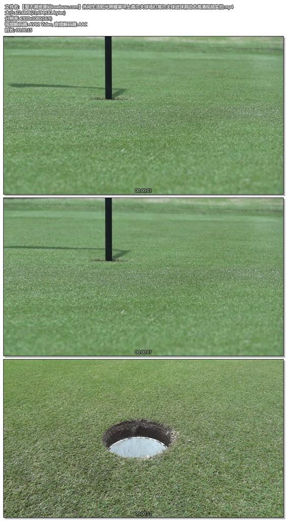 休闲生活阳光照耀草坪上高尔夫球场打高尔夫球进球洞动态高清视频实拍