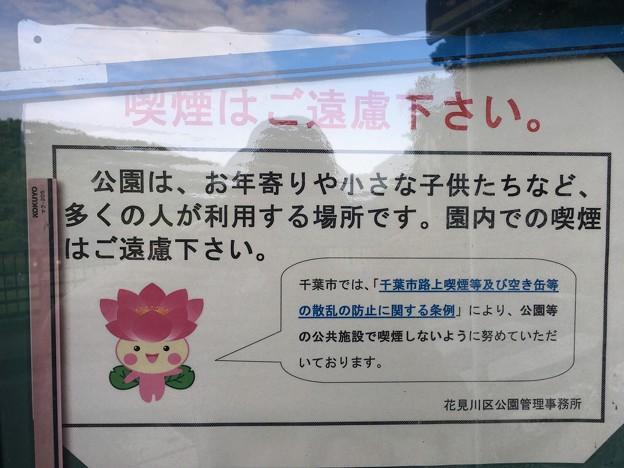 ちはなちゃん 喫煙はご遠慮ください 花島公園