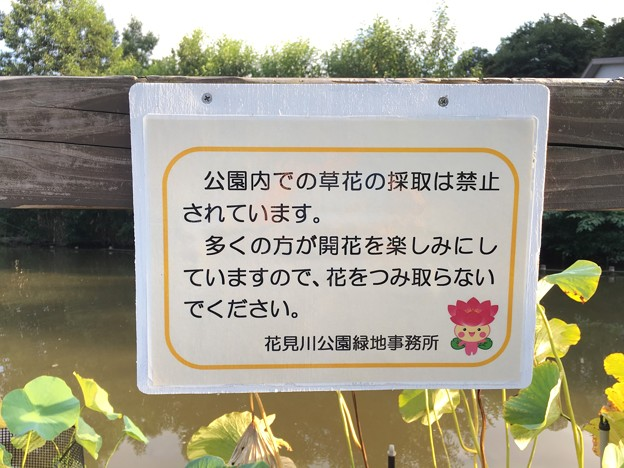 ちはなちゃん 公園内での草花の採取は禁止されています 花島公園