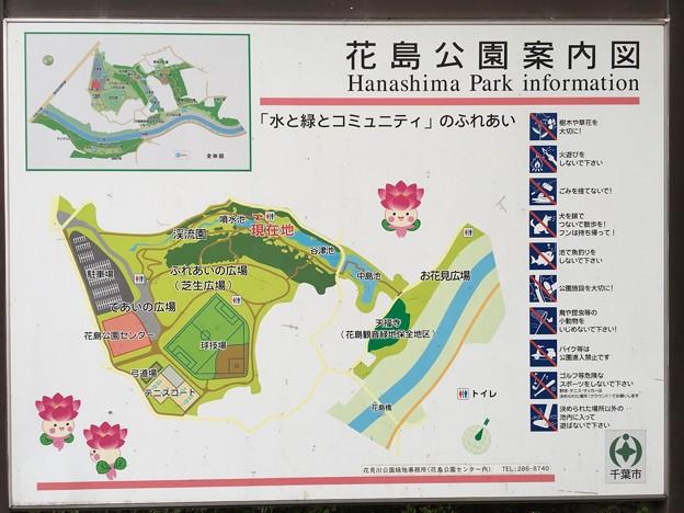ちはなちゃん 花島公園案内図 花島公園