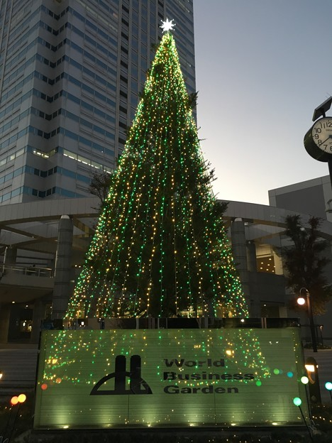 Photos: クリスマスツリー ワールドビジネスガーデン