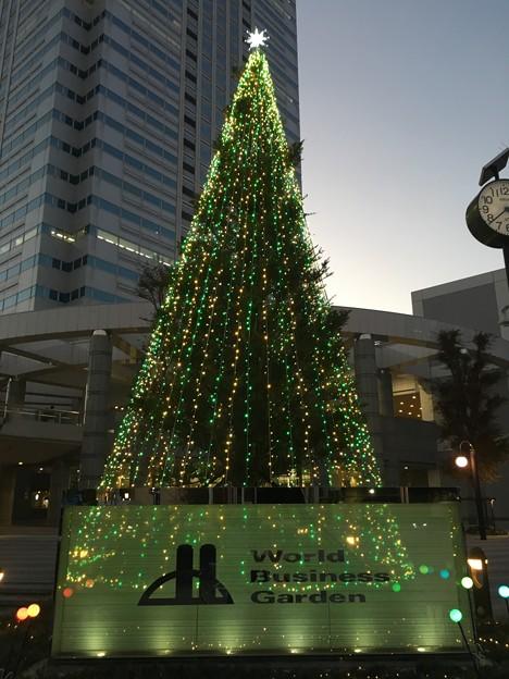 クリスマスツリー ワールドビジネスガーデン