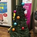 クリスマスツリー イオンスタイル検見川浜