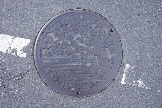 s3347_富岡町マンホール_おすい