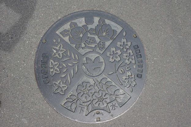 s3509_相馬市マンホール_下水